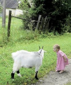 «Ну скажи: «Я, коза-дереза…»