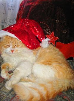 «Я теж — Санта Клаус!».