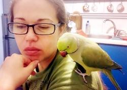 «Читаємо разом  із моїм улюбленцем  — папужкою»