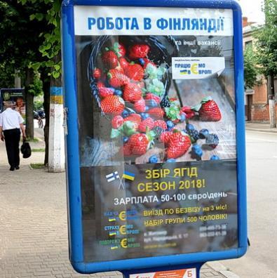 Із біопаспортом — за фінськими ягодами? |Жителів області вербують на роботу в ЄС… «за безвізом»