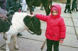 Мій маленький коник — поні.